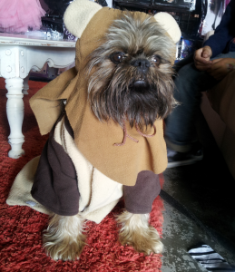 His real name is Ewok! True story.