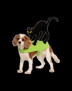 Dog's Halloween costume
