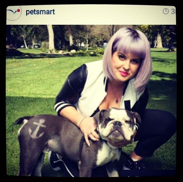 Kelly Osbourne Pet Paint