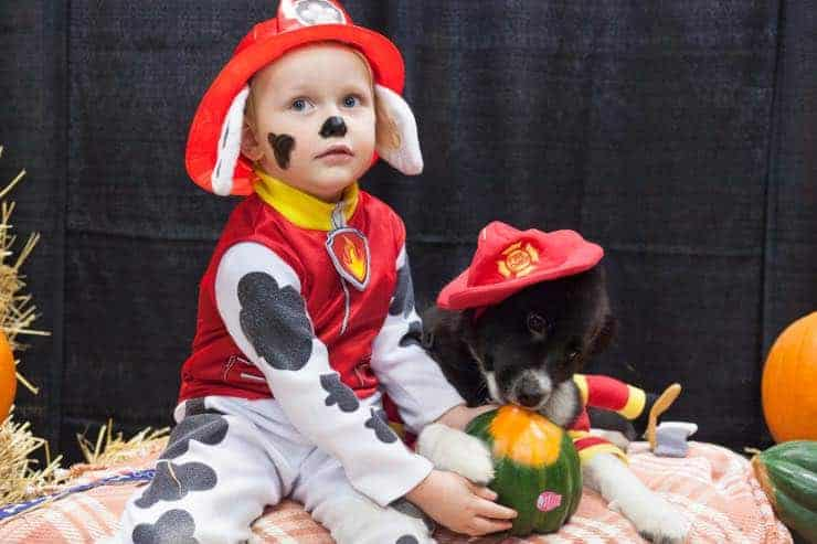 Paw patrol Costume Dog