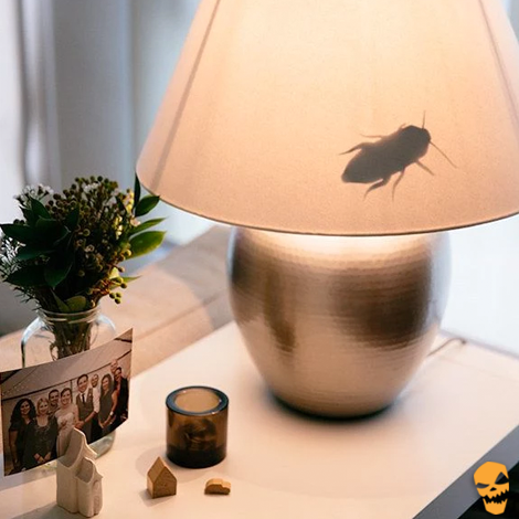 cockroach in lampshade halloween prank