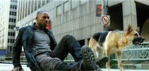 Sam - I Am Legend