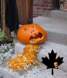 Saskatchewan Pumpkin